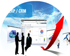 IT Software - ERP / CRM